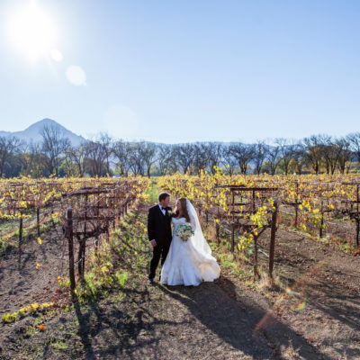 Elegant Black and Green Fall Vineyard Wedding in California